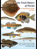 Fishes in the Freshwaters of Florida