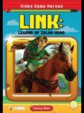 Link: Legend of Zelda Hero