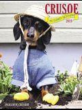 Crusoe the Celebrity Dachshund 2019 Engagement Calendar (Dog Breed Calendar)