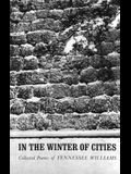 In the Winter of Cities: Poetry