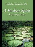 A Broken Spirit: The Journey Home