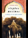 Elephas Maximus: A Portrait of the Indian Elephant