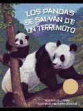 Los Pandas Se Salvan de Un Terremoto (Pandas' Earthquake Escape)