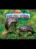 Roly-Poly Pillbugs