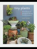Tiny Plants: Discover the Joys of Growing and Collecting Itty-Bitty Houseplants