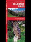 Colorado Birds: A Folding Pocket Guide to Familiar Species