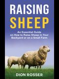 Raising Sheep: An Essential Guide on How to Raise Sheep in Your Backyard or on a Small Farm