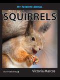 My Favorite Animal: Squirrels