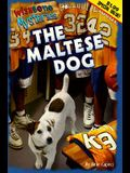 Wishbone Sweepstakes the Maltese Dog: Offer Good May 1st Through June 30th 1998