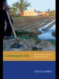 Cultivating the Nile: The Everyday Politics of Water in Egypt