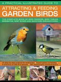 A Practical Illustrated Guide to Attracting & Feeding Garden Birds: The Complete Book of Bird Feeders, Bird Tables, Birdbaths, Nest Boxes and Backyard