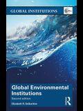 Global Environmental Institutions