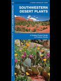 Southwestern Desert Plants: An Introduction to Familiar Species