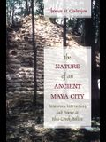 The Nature of an Ancient Maya City: Resources, Interaction, and Power at Blue Creek, Belize