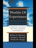 Worlds of Experience Interweaving Philosophical and Clinical Dimensions in Psychoanalysis