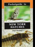 Pocketguide to New York Hatches