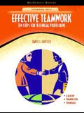 Effective Teamwork: Ten Steps for Technical Professions (NetEffect)