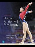Human Anatomy & Physiology Plus Mastering A&p with Pearson Etext -- Access Card Package [With eBook]