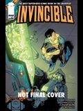 Invincible Volume 20: Friends