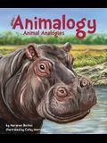 Animalogy: Animal Analogies