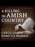 A Killing in Amish Country Lib/E: Sex, Betrayal, and a Cold-Blooded Murder