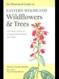 An Illustrated Guide to Eastern Woodland Wildflowers and Trees: 350 Plants Observed at Sugarloaf Mountain, Maryland