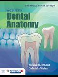 Woelfel's Dental Anatomy, Enhanced Edition