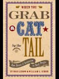 When You Grab a Cat by the Tail: Small Bursts of Inspiration for Busy People