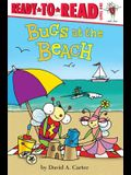 Bugs at the Beach