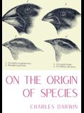 On the Origin of Species: A work of scientific literature by Charles Darwin which is considered to be the foundation of evolutionary biology and