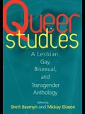Queer Studies: A Lesbian, Gay, Bisexual, and Transgender Anthology
