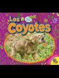 Los Coyotes (Coyotes)