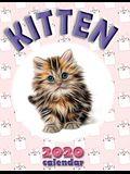 Kitten 2020 Calendar