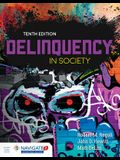 Delinquency in Society [With Access Code]