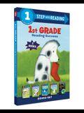 1st Grade Reading Success Boxed Set: Best Friends, Duck & Cat's Rainy Day, Big Shark, Little Shark, Drop It, Rocket! the Amazing Planet Earth