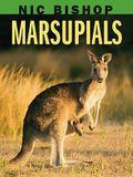 Nic Bishop: Marsupials