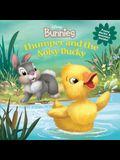 Disney Bunnies Thumper and the Noisy Ducky