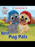 Disney Junior Puppy Dog Pals: Best Pug Pals Touch-And-Feel