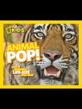 Animal Pop!: With 5 Incredible, Life Size Fold-Outs