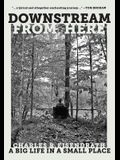 Downstream from Here: A Big Life in a Small Place