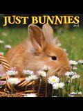Just Bunnies 2022 Wall Calendar