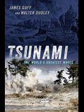 Tsunami: The World's Greatest Waves