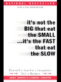 It's Not the Big That Eat the Small...It's the Fast That Eat the Slow