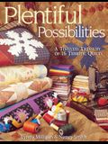 Plentiful Possibilities. A Timeless Treasury of 16 Terrific Quilts - Print on Demand Edition