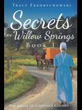 Secrets of Willow Springs - Book 1: The Amish of Lawrence County