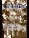 The Melungeions: The Resurrection of a Proud People