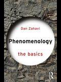 Phenomenology: The Basics