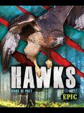 Hawks: Birds of Prey