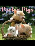 Pocket Pigs: The Famous Teacup Pigs of Pennywell Farm