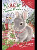 Magic Animal Friends: Pippa Hoppytail's Rocky Road: Book 21